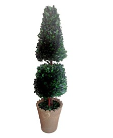 """Laura Ashley 30"""" Tall Preserved Natural Boxwood Topiary Artificial Faux Decor"""