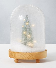 CLOSEOUT! Holiday LED Winter Scene in Cloche