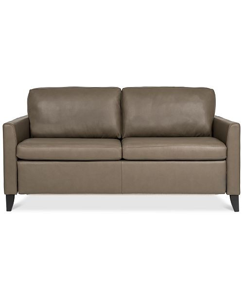 Strange Priley 70 Leather Queen Sleeper Sofa Ibusinesslaw Wood Chair Design Ideas Ibusinesslaworg