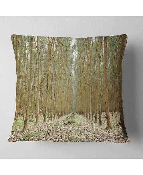 "Design Art Designart Rubber Trees Row In Thailand Modern Forest Throw Pillow - 16"" X 16"""