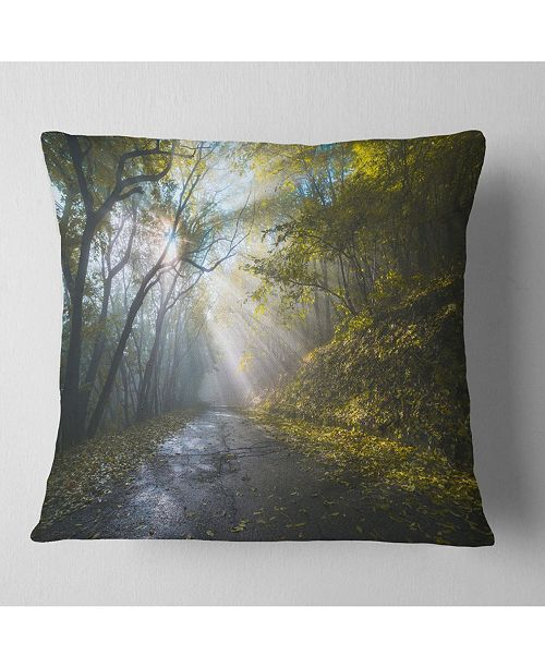 "Design Art Designart Road In Autumn Forest At Sunset Landscape Printed Throw Pillow - 16"" X 16"""