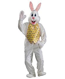 Buy Seasons Men's Professional Easter Bunny Costume