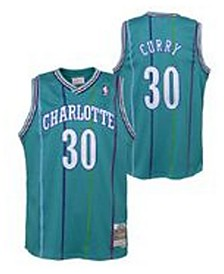 Mitchell & Ness Big Boys Dell Curry Charlotte Hornets Hardwood Classic Swingman Jersey