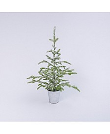 33-Inch High Flocked Evergreen Tree in Bucket