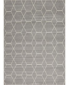 Plexity Plx1 Light Gray Area Rug Collection