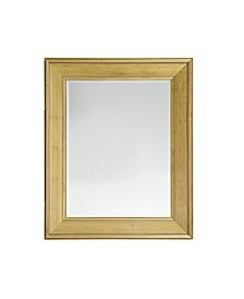 Martha Stewart Westchester Rectangle Accent Mirror