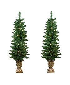 Set of 2 Pre-Lit Whitmire Pine Potted Artificial Christmas Trees - Clear Lights