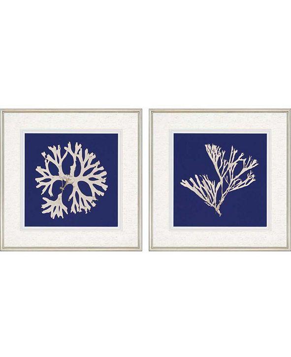 "Paragon Seaweed on Navy I Framed Wall Art Set of 2, 27"" x 27"""