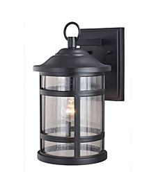 Southport Rust Proof Outdoor Wall Light with Clear Glass