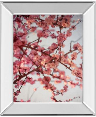 """Cherry Blossoms I by Susan Bryant Mirror Framed Print Wall Art, 22"""" x 26"""""""