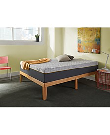 "Early Bird 10"" Hybrid Memory Foam and Spring Medium Plush Mattress- Queen"