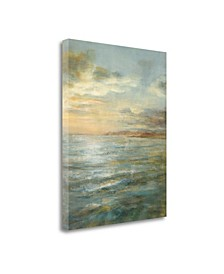 "Serene Sea III by Danhui Nai Giclee Print on Gallery Wrap Canvas, 35"" x 45"""