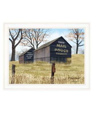 """Treat Yourself Mail Pouch Barn by Billy Jacobs, Ready to hang Framed Print, White Frame, 27"""" x 21"""""""
