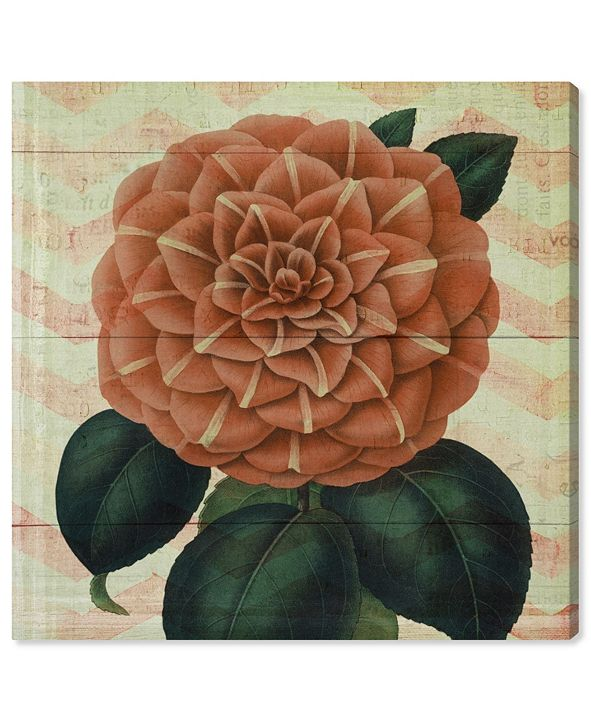 "Oliver Gal Striped Camellia Peach Canvas Art, 12"" x 12"""