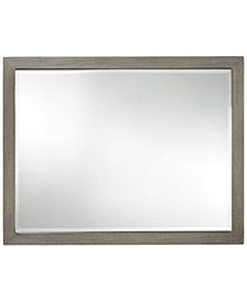 Scrimmage Mirror