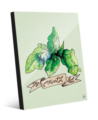 Watercolor Mint on Green 24
