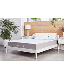 "The 11"" Memory Foam Mattress- Queen + 2 Pillows"