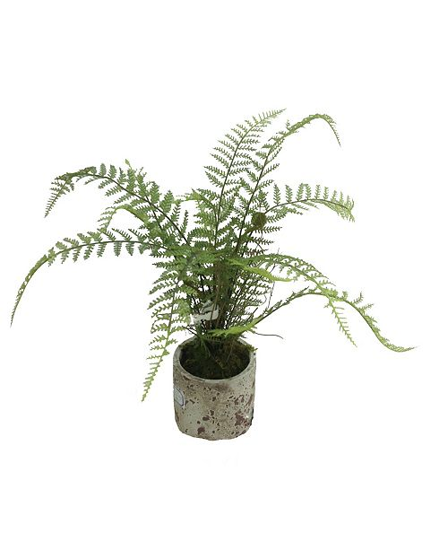 "Mills Floral 23"" Forest Fern Topiary"