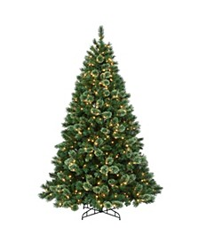 7.5 ft. Hamburg Pine Tree with Clear Lights