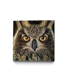 "Dino Tomic Owl Splatter Museum Mounted Canvas 24"" x 24"""