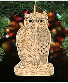 Owl Coloring Ornament Diy, Set of 3