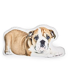 Pet Shaped Decorative Pillows