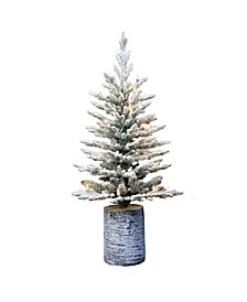 """3"""" Pre-Lit Potted Flocked Arctic Fir Tree"""