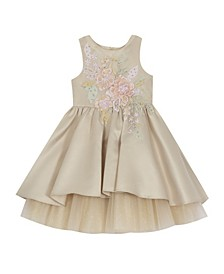 Toddler Girl Satin Dress With Floral Applique
