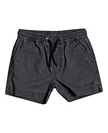 Little Boys Taxer Shorts