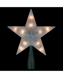 Lighted Frosted-Point Star Christmas Tree Topper