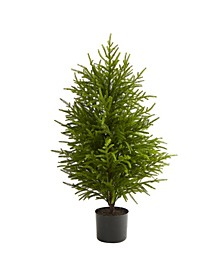 "Norfolk Island Pine ""Natural Look"" Artificial Tree"