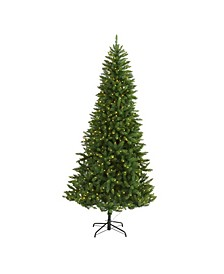 Valley Fir Artificial Christmas Tree with 500 Clear LED Lights