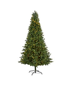Vermont Fir Artificial Christmas Tree with 450 Clear LED Lights