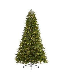 Washington Fir Artificial Christmas Tree with 600 Clear Lights and 1610 Bendable Branches