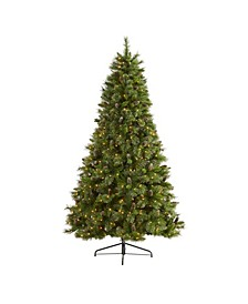 Golden Tip Washington Pine Artificial Christmas Tree with 600 Clear Lights, Pine Cones and 1568 Bendable Branches