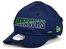 Kids Seattle Seahawks 2020 Training 39THIRTY Cap