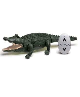 Discovery Kids Toy Remote Control Crocodile