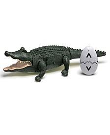 Toy Remote Control Crocodile