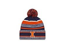 Illinois Fighting Illini Striped Marled Knit Hat