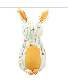 Baby Boys and Girls Super Soft Plush Bunny - Parsnip