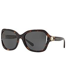 Sunglasses, HC8238