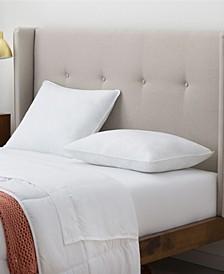 Signature Plush Pillow