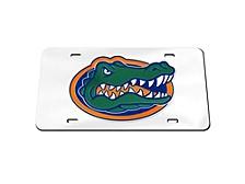 Florida Gators Laser Tag