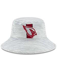 Arizona Cardinals 2021 Training Bucket