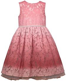 Toddler Girls Sleeveless Ombre Lace Dirndl Skirt Dress