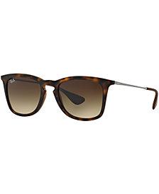 Ray-Ban Sunglasses, RB4221