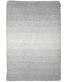 Nourison Ombre Shag Rugs
