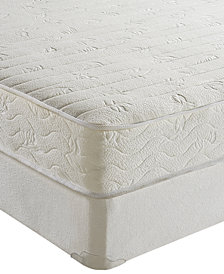 "Sleep Trends Ana 8"" Cushion Firm Tight Top Mattress- Twin"