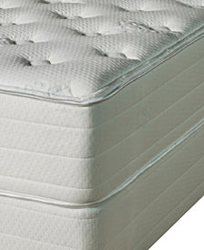Nature's Spa by Paramount Eminence Latex 14'' Luxury Firm Mattress Set- Queen