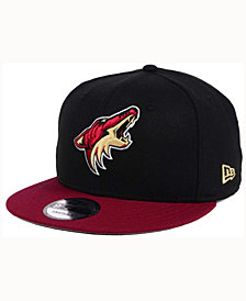 New Era Arizona Coyotes All Day 2T 9FIFTY Snapback Cap